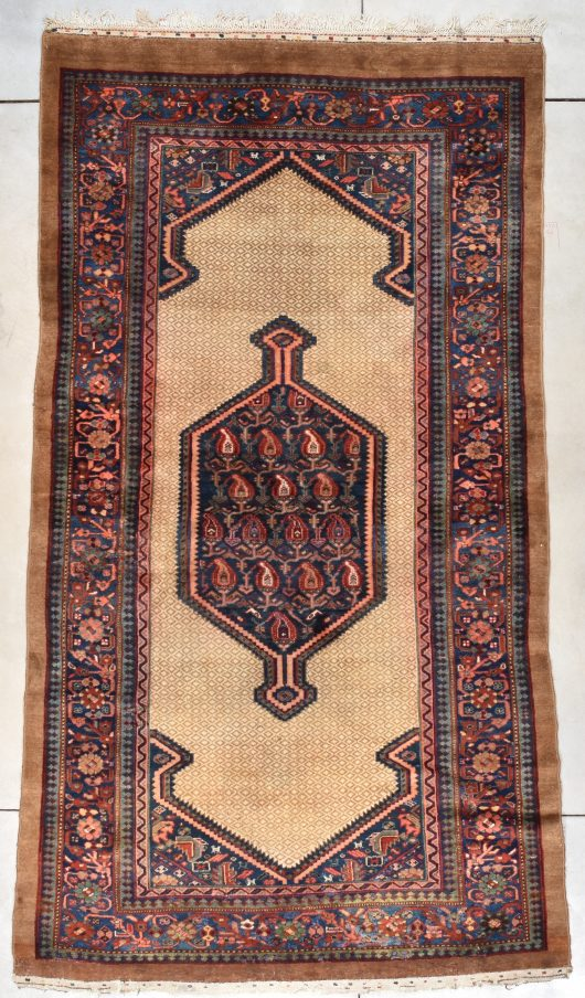 7801 Serab camel hair rug 5-10x10-10